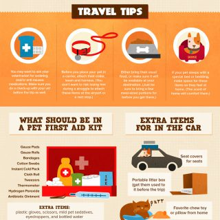 Pet Travel 101