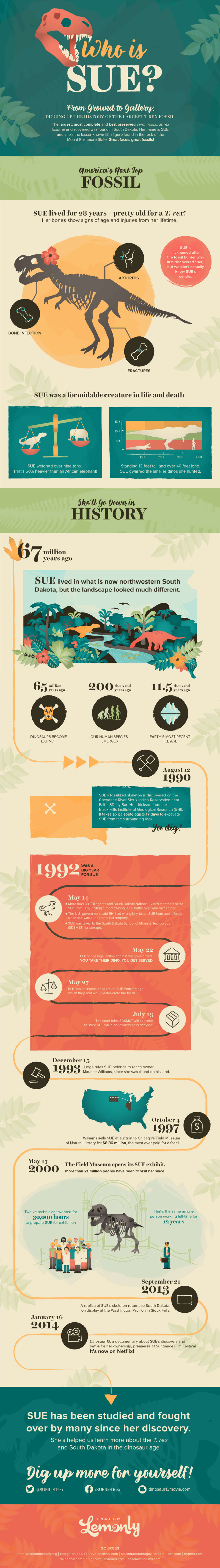 Best Infographics: Who Is Sue the Dinosaur?